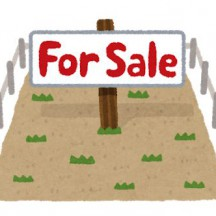 tochi_forsale
